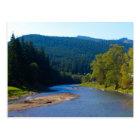 Romania, Moldova, river among the pine forests Postcard