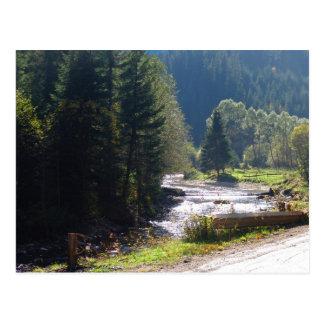 Romania, Moldova, River in the mountains Postcard