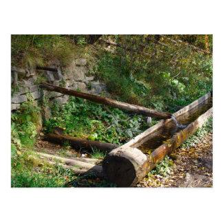 Romania, Moldova, Wooden water trough Postcard
