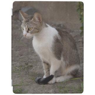 Romania, Transylvania, Sighisoara. Pet cat. iPad Cover