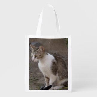 Romania, Transylvania, Sighisoara. Pet cat. Market Totes