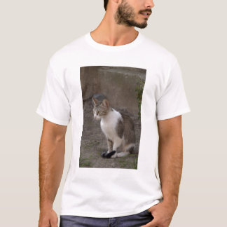Romania, Transylvania, Sighisoara. Pet cat. T-Shirt
