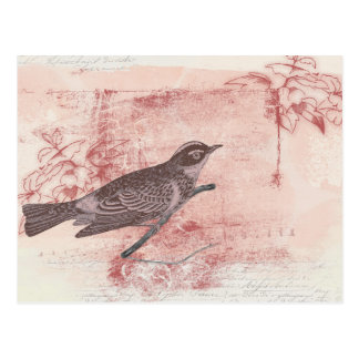 romantic bird drawing grunge artistic letter love postcard