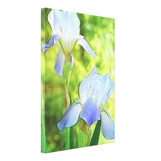 Romantic Blue Irises Canvas Print