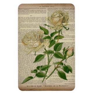 romantic botanical flower art girly white rose rectangular magnet