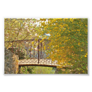Romantic Bridge - Photo Print