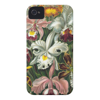 romantic date blossoms rsvp colorful chic Case-Mate iPhone 4 case