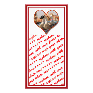 Romantic Gondola Ride for Two Geese Photo Cards