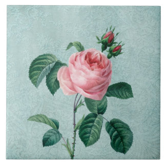 Romantic Lace Rose Tile