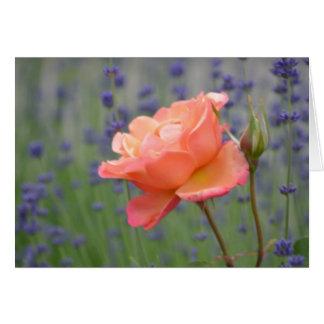 Romantic Lavender and Rose Greeting Card