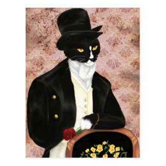 Romantic Mr Darcy Cat postcard