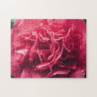 Romantic Pink Flower Closeup   Puzzle