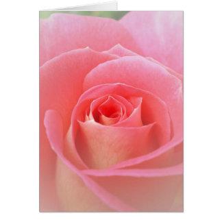 Romantic Pink Rose Card
