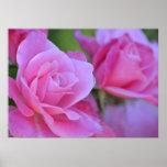 Romantic Pink Rose Floral Print
