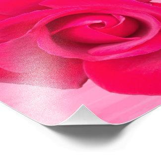 Romantic Red Pink Rose Art Photo