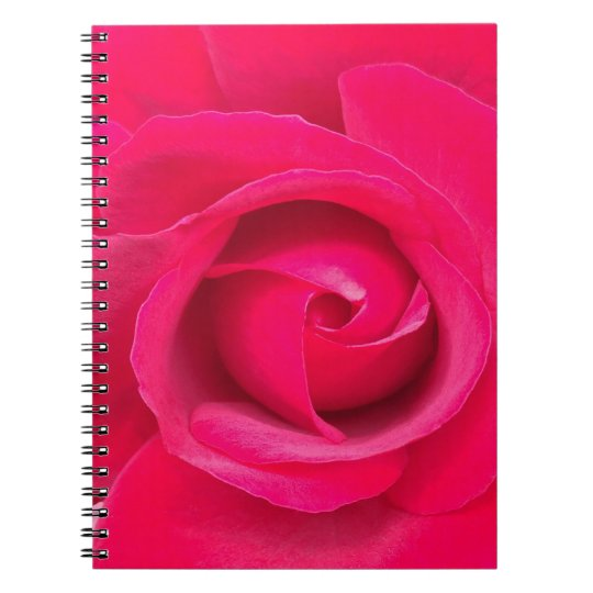 Romantic Red Pink Rose Notebooks