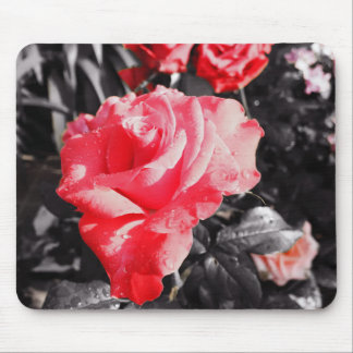 Romantic Red Roses Mouse Pad