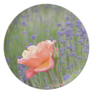 Romantic Rose and Lavender Plates