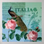 Romantic Roses Musical Peacock Poster
