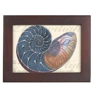 Romantic Seashell Keepsake Box