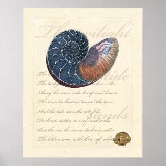 Romantic Seashell Poster