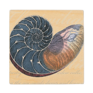 Romantic Seashell Wood Coaster