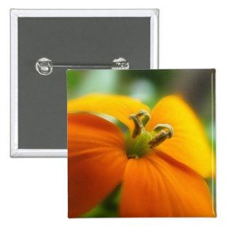 Romantic Siberian Wallflower Bloom Pins