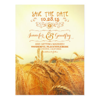 romantic wheat field save the date postcards