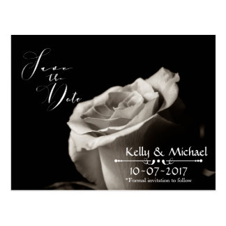 Romantic White Rose Save the Date Cards Postcard