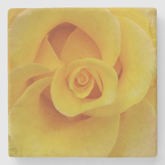 Romantic Yellow Rose Petals Stone Coaster