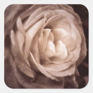 Romantica- this rose says love square sticker