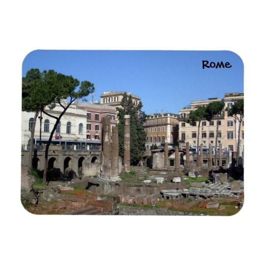 Rome (Largo di Torre Argentina) Rectangular Photo Magnet