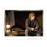 Ron Weasley 2 Postcard