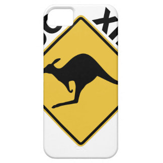 Roo Xing iPhone 5 Case