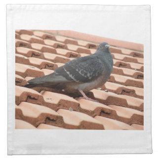 Rooftop Pigeon Napkin
