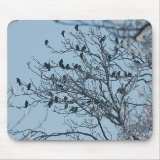 Rooks in tree mouse pad