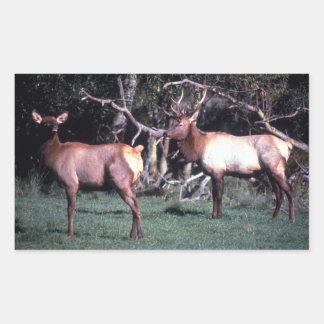 Roosevelt Elk Rectangular Sticker