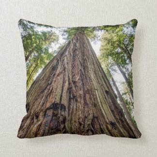 Roosevelt Grove Cushion