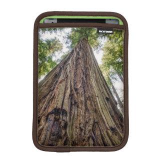 Roosevelt Grove iPad Mini Sleeve