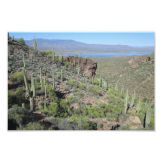 Roosevelt Lake View Tonto National Monument Photo Print