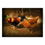Rooster and Hen Greeting Cards