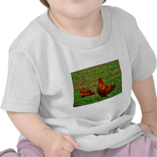 Rooster  and his chick tshirts