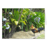 Rooster Blank Nature Greeting Card