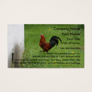 Rooster- business card template
