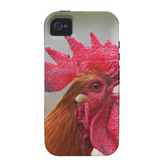 Rooster Vibe iPhone 4 Case