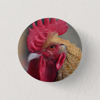 Rooster Chicken 3 Cm Round Badge