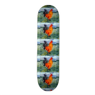 Rooster Chicken Art Custom Skateboard