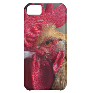 Rooster Chicken Case For iPhone 5C