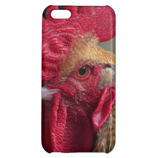 Rooster Chicken iPhone 5C Cover