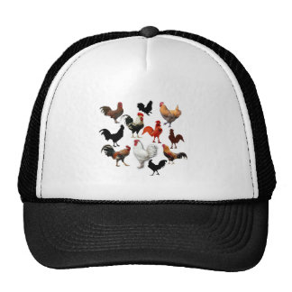 Rooster Collage Vintage Rustic Chickens Mesh Hat